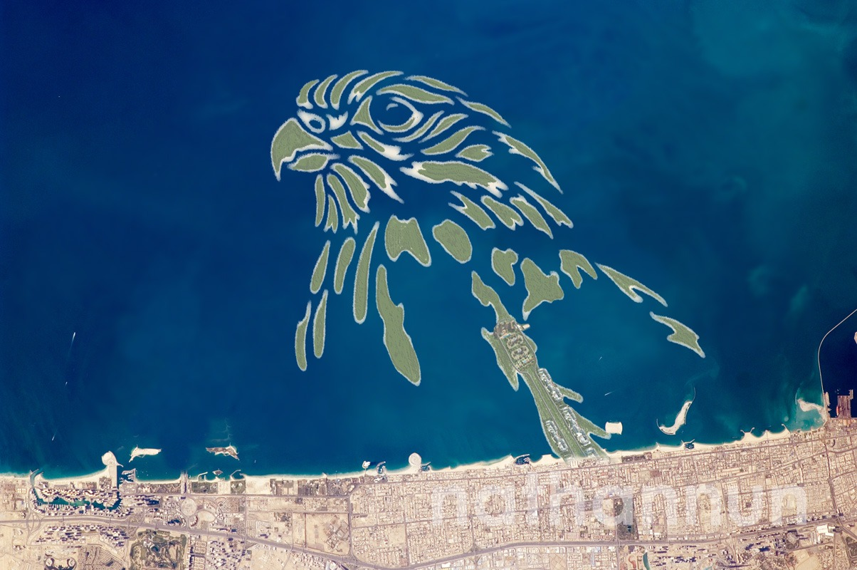 A falcon drawn to be made to look like islands in the sea.