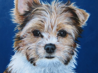 acrylic painting of a parti yorkie