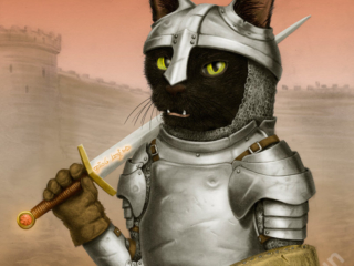 Fighter Cat - part of my adventure cat series based on classic fantasy and d&d classes