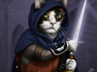 Rogue Cat - part of my adventure cat series based on classic fantasy and d&d classes