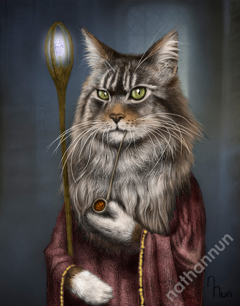 Wizard Cat - part of my adventure cat series based on classic fantasy and d&d classes