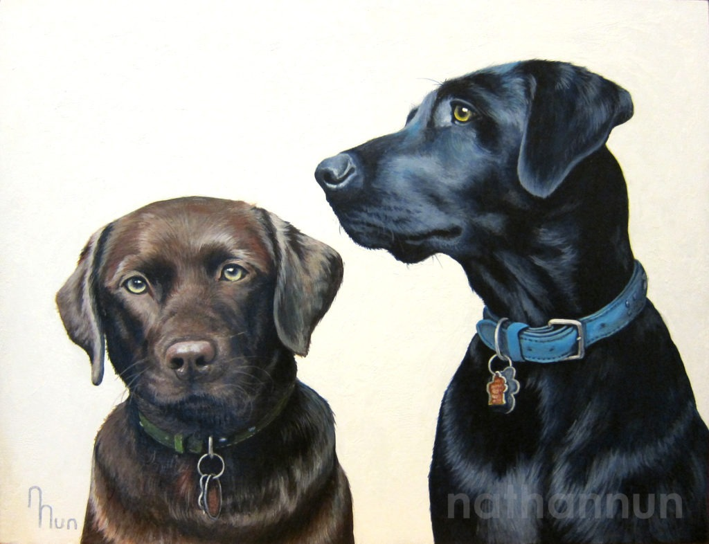 Portrait of two Labradors